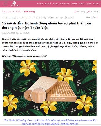 Báo chí nói về nệm Thuần Vệt